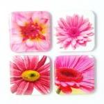 Magnets - Pretty in Pink - ..
