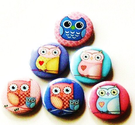 Fridge magnets - Set of 6 Owl refrigerator magnets