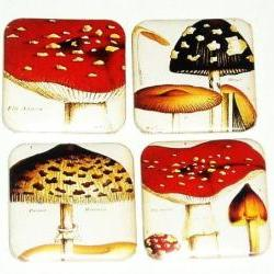 Magnets, Fridge magnet - Mushroom magnets (fms2)